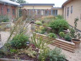 Hospital courtyard mature