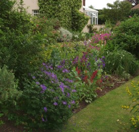 Large country garden border after