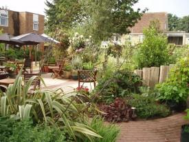 Sensory garden - mature
